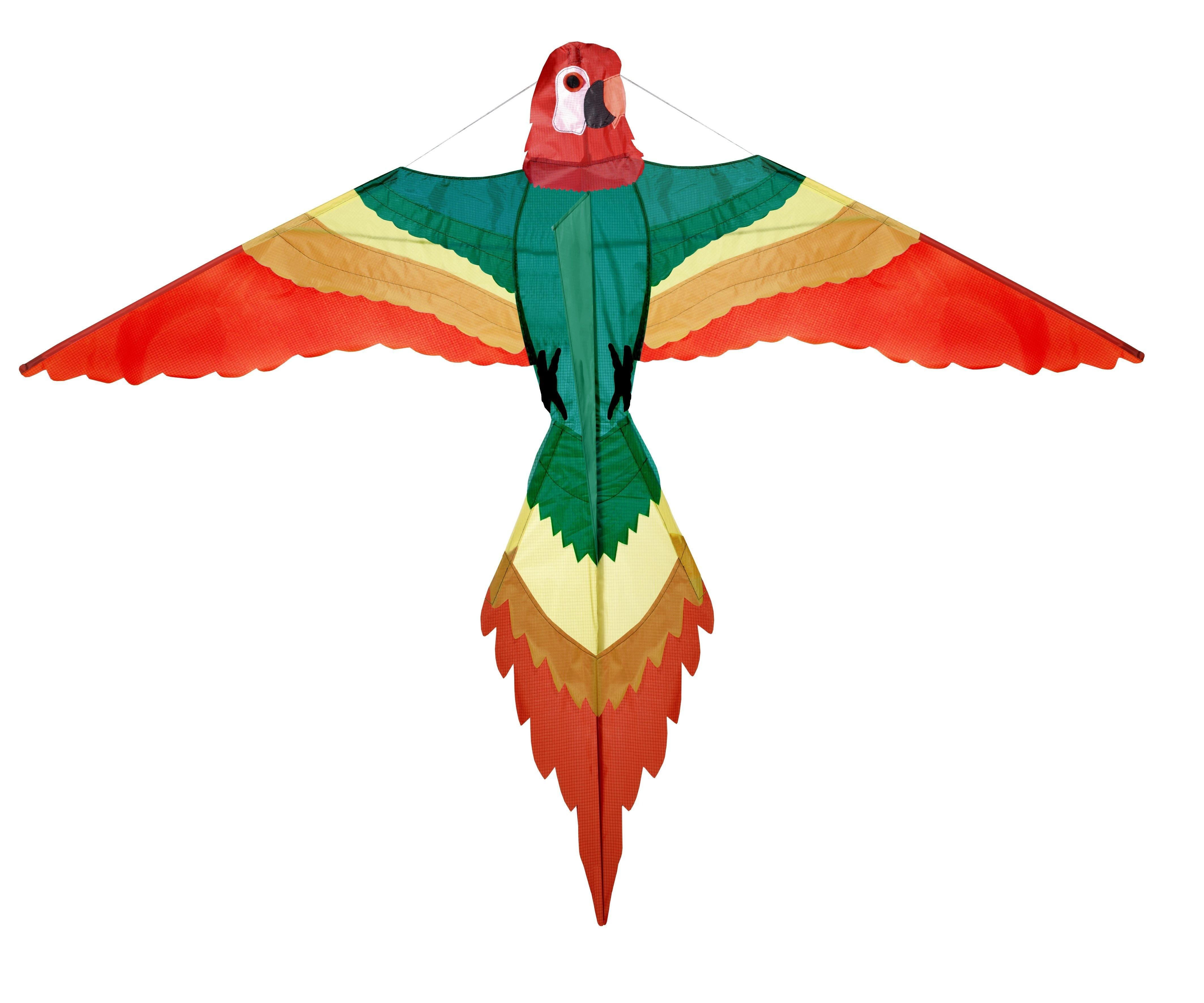 Wolkensturmer   Papagei Kite