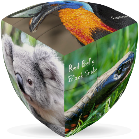 V-Cube Australian Animals - 3 x 3 Pillow Puzzle Cube