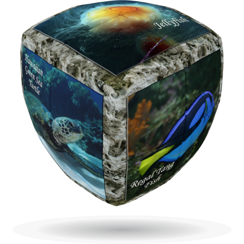 V-Cube SEA WORLD - 2 x 2 Pillow Cube