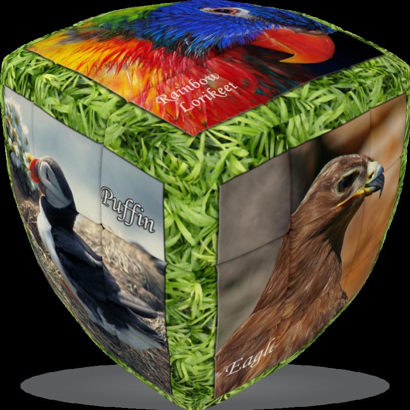 V-Cube Unique Birds - 3 x 3 Pillow Puzzle Cube