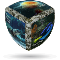V-Cube SEA WORLD - 2 x 2 Pillow Cube