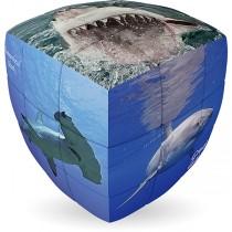 V-Cube SHARKS - 2 x 2 Pillow Cube