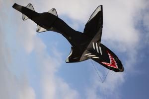 Wolkensturmer | Hey Hai Kite